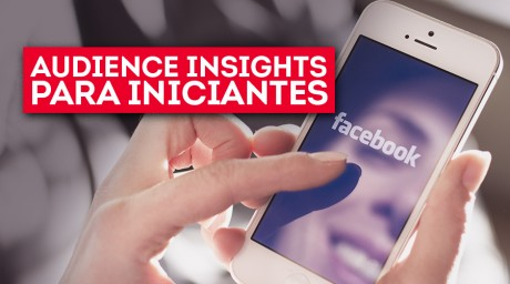 8ps_thumb_3034-Audience-Insights-Para-Iniciantes_01