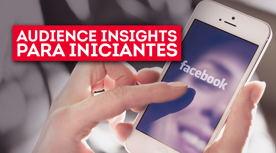 8ps_thumb_3034-Audience-Insights-Para-Iniciantes_01